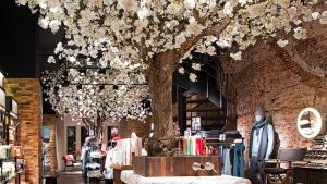 Retail experimental bomen in de winkel